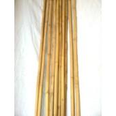 "Bamboo Stakes - 4' x 1/2"" - 250pcs/bale"