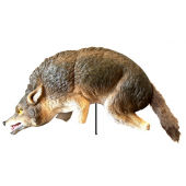 Coyote 3D Visual Decoy